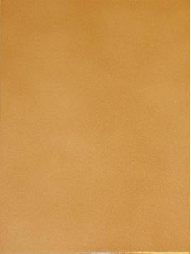 Carrelage mural Silver champagne beige 20X25 - Paquet 1 m²