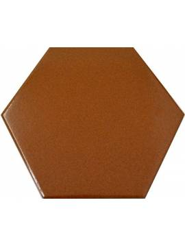 Carrelage hexagonal marron 13,2x15,2 Tomette - La piece