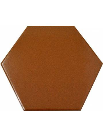 carrelage hexagonal marron 13 2x15 2 tomette la piece. Black Bedroom Furniture Sets. Home Design Ideas